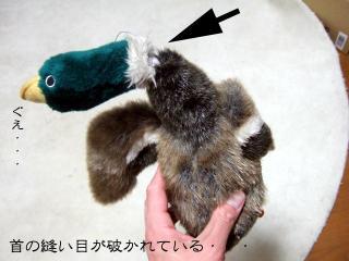 わんこおもちゃたち(4)