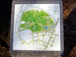 わんプラから都築中央公園へ(8)