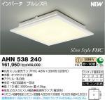 AHN538240.jpg