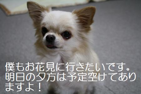 IMG_2953.jpg