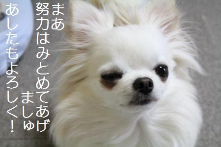 IMG_3353.jpg