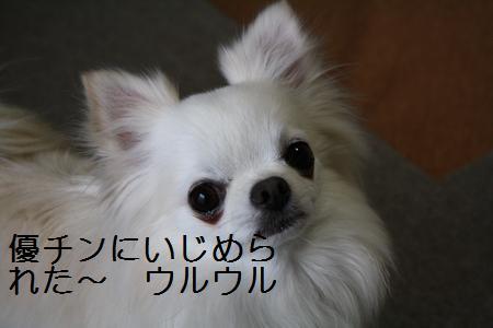 IMG_3425.jpg