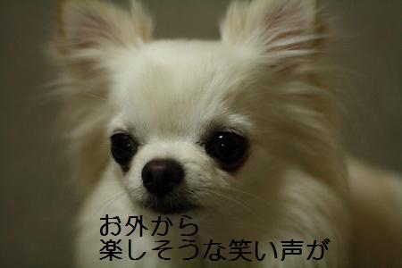 IMG_4217.jpg