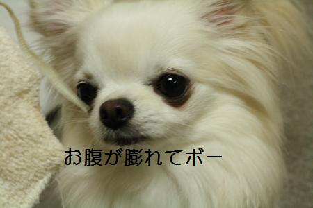 IMG_4401.jpg