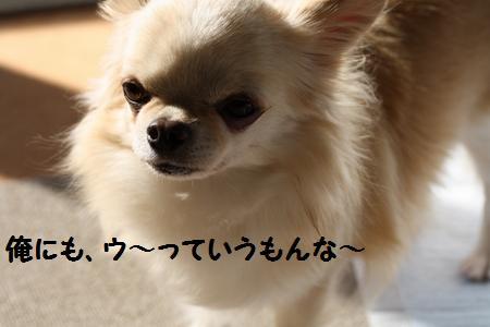 IMG_7830.jpg