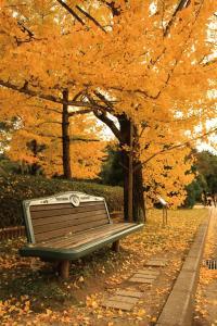 京都植物園01