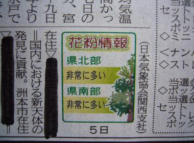 りんちゃん.46jpeg
