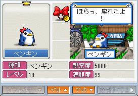 1ペンギン親密度5k2009_0305_1654_1