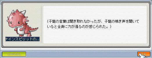 14子龍32009_0602_2145_3