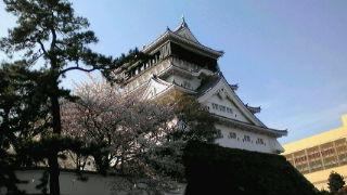 『小倉城』と桜