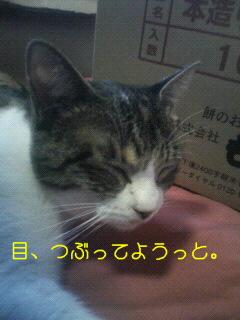 mike5.jpg