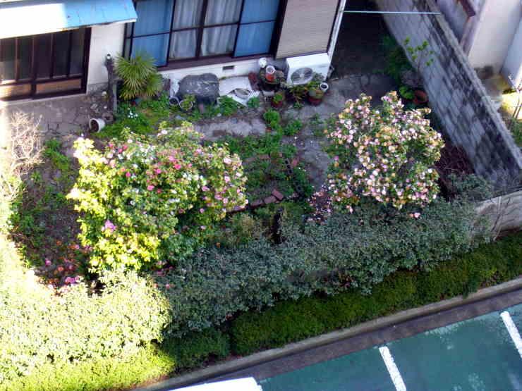隣の家の庭