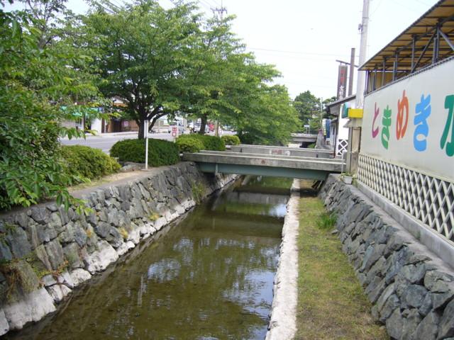 西条市ときめき水都市前の小川