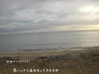 20071223-01 (22)-03
