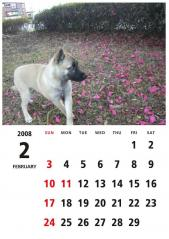 calendar2008d_02-02.jpg