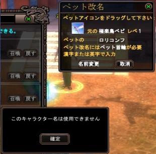 5_20090526103624.jpg