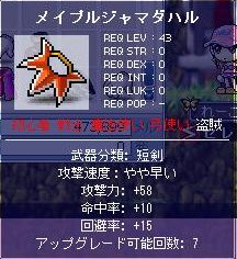 Maple0016z.jpg
