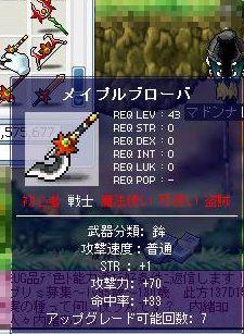 Maple0038y.jpg