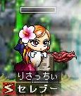 Maple0439p.jpg