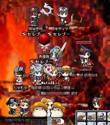 Maple0500q.jpg