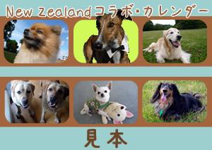 ニュージーランドカレンダー(見本)