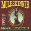 A Portrait Of Bluegrass Jam / Muleskinner