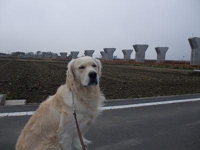2009_0301_散歩0032