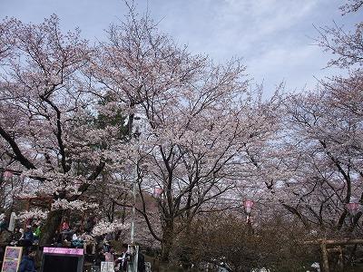 2009_0404_散歩0006