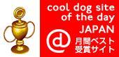 cooldogへ