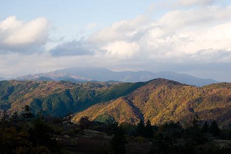 茶臼山1-11