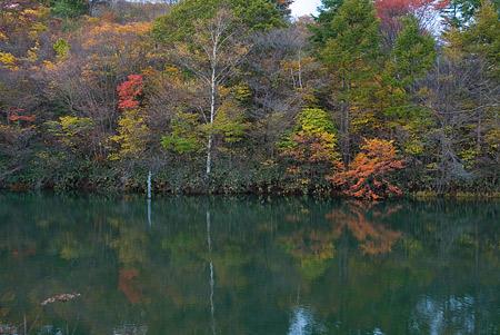 茶臼山3-5
