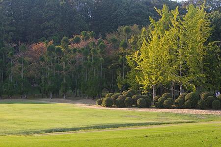 森林公園秋2-6