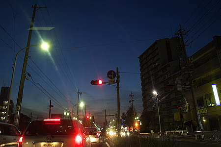 近所写真-9