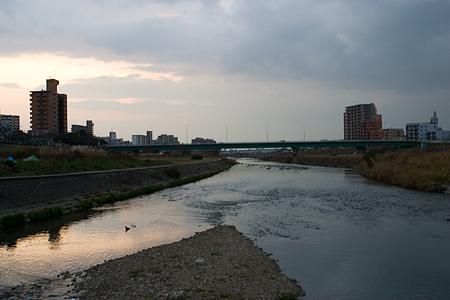 いつもの河原にて2