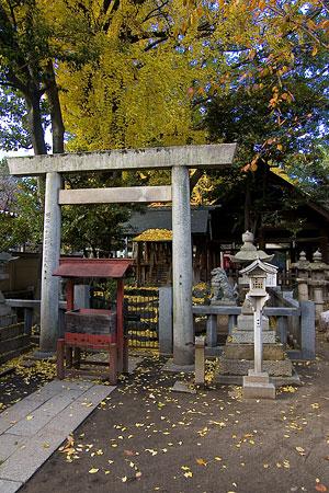 那古野神社-9