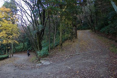 小牧山山頂に続くつづら折りの道