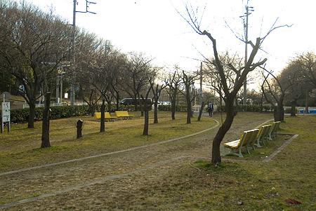 平和公園-1