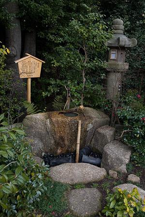 徳川園風景-11