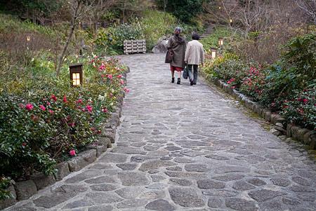 徳川園風景-12
