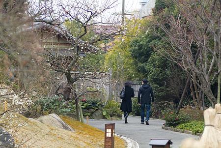 徳川園風景-14