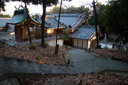 日吉神社社殿を上から見る