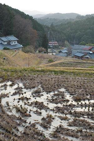 松平郷水風景-12