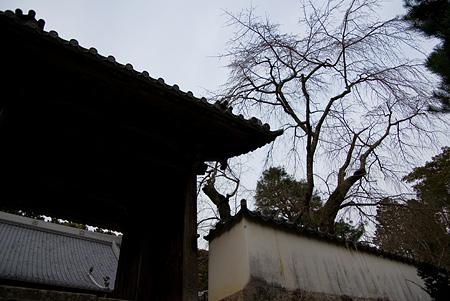 松平郷寺社編-6