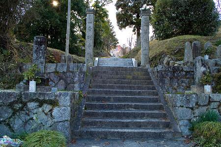 金剛寺のしだれ桜-12