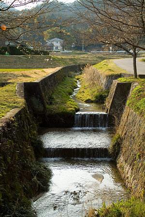 藤岡神社-3