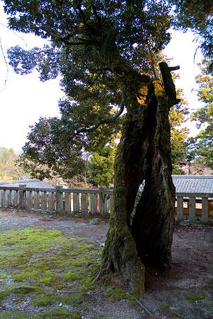 八柱神社-6