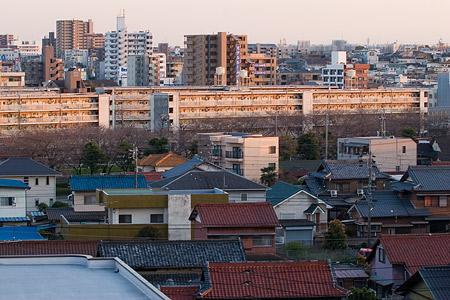 近所桜3月-12