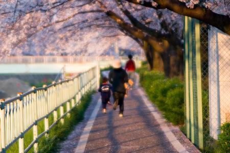 香流川桜1-12