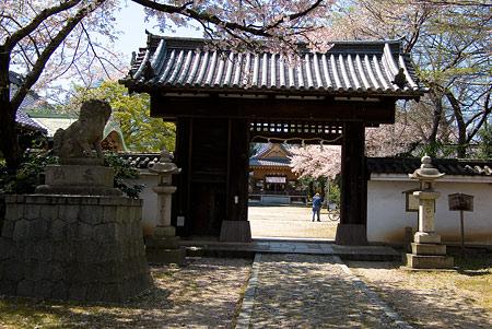 膳所神社-2