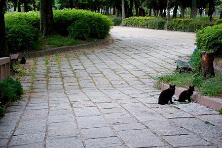 名城公園-10